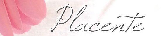 placente〜プラシエンテ〜